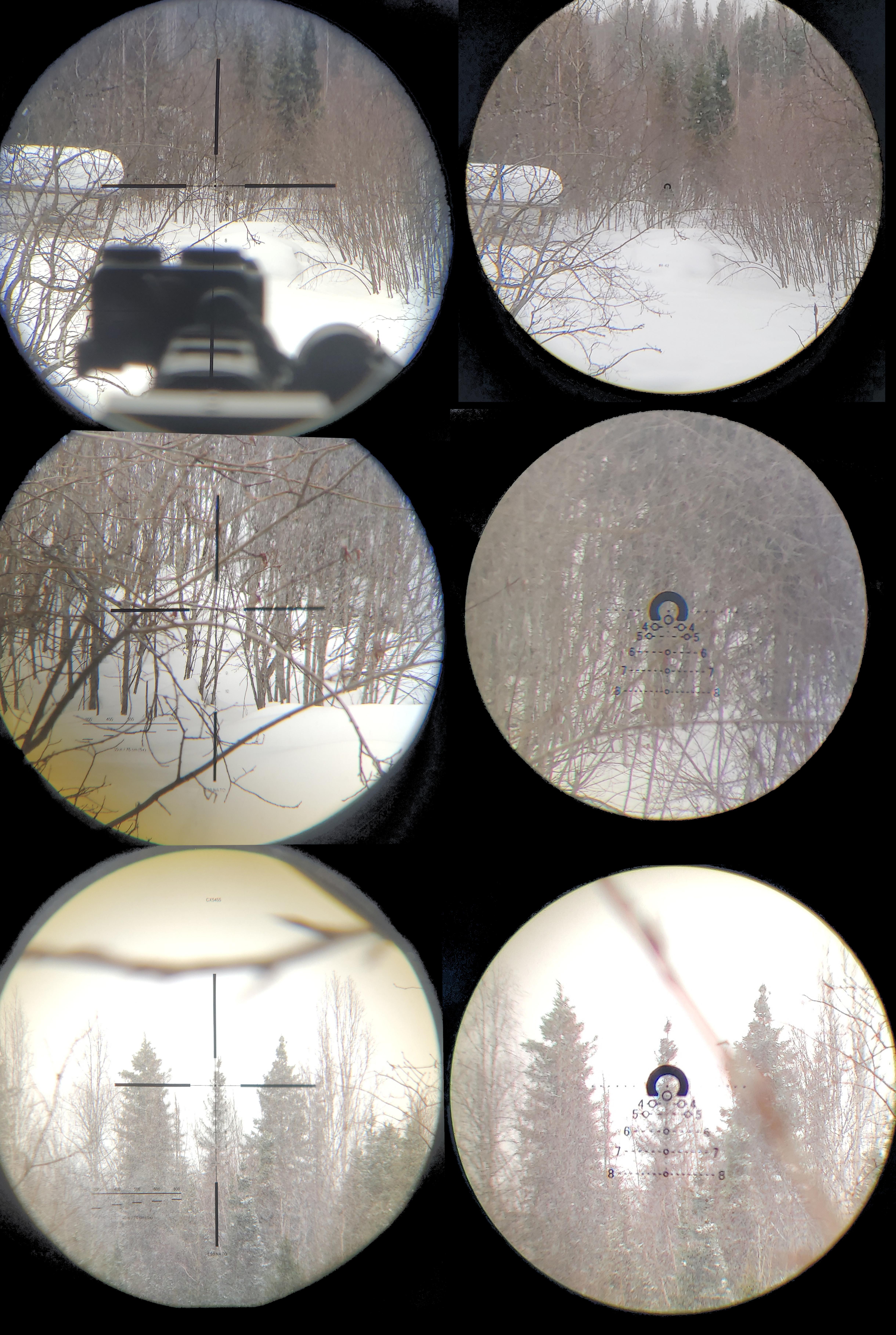 GRSC Inc 1.1-10X Scope....-norden-1-6-vs-elcan-1.5-6.jpg
